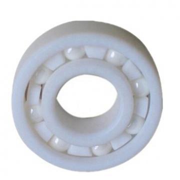 Cylindrical Roller Bearing (N204/Nf204/Nj204/Nu204)