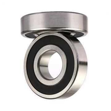 High Speed Cylindrical Roller Bearing N204 N304 Nj204 Nj2204 Nj304